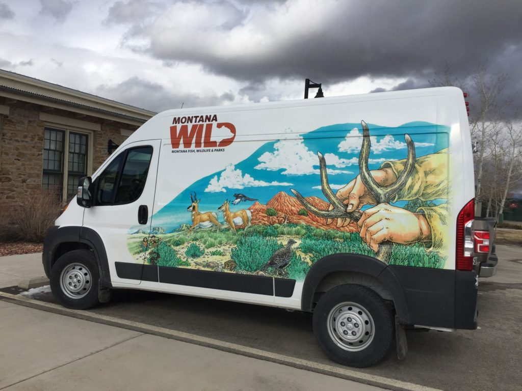 "Montana Fish, Wildlife & Parks 'Traveling Wild' ""terrestrial"" graphics."